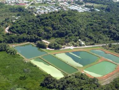Lagune Morne Coco à Rémire-Montjoly