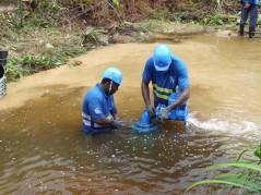 Réparation d'une canalisation Comté
